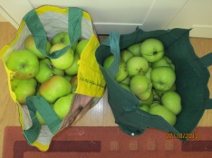 Apples...more apples