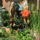 Mr & Mrs Scarecrow