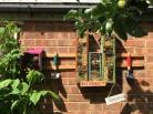 Bug and bee house