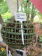Pine cones for ladybirds