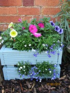 Margarets old decking made into a planter!